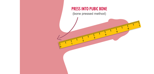 how to properly measure penile length